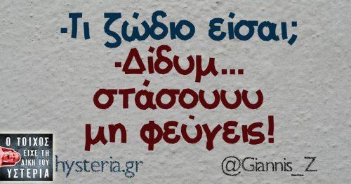 Giannis_Z
